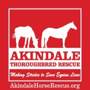 Akindale Thoroughbred Rescue: A Living Legacy