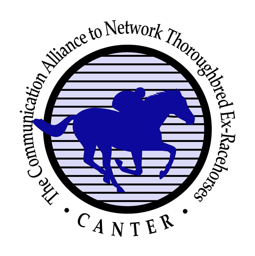 CANTER: Providing Options at the Track