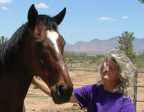 Harmony and Hope Horse Haven Offers Sanctuary in the Desert