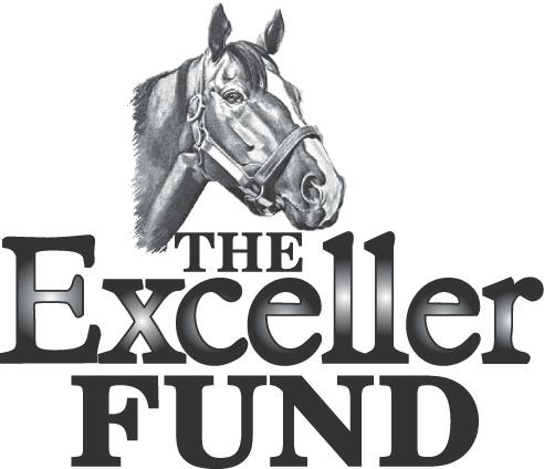 The Exceller Fund Finds its Niche