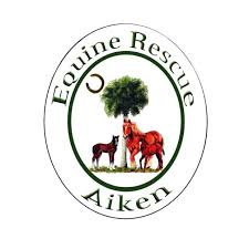 Featured Charity: Equine Rescue of Aiken Focuses on People Helping Horses and Horses Helping People
