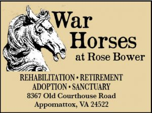 A Focus on War Horses in Historic Virginia